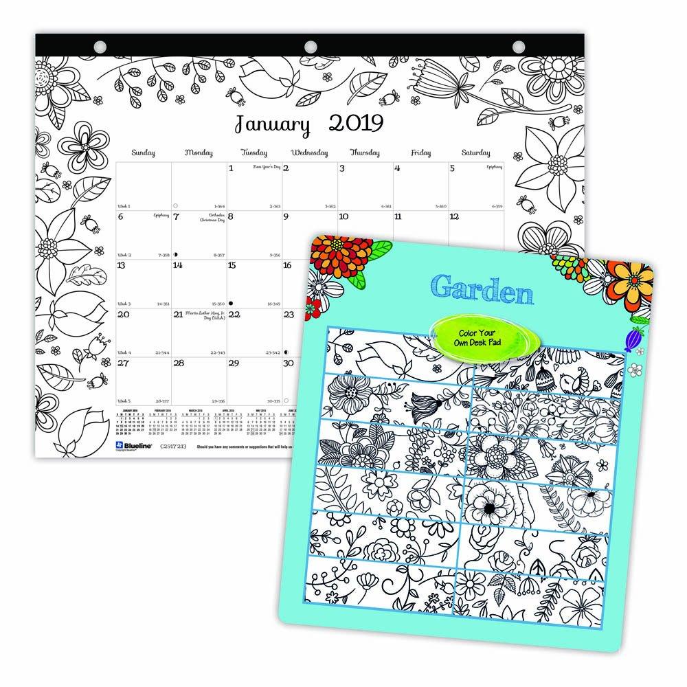 Amazon.com: Blueline DoodlePlan - Calendario de escritorio ...