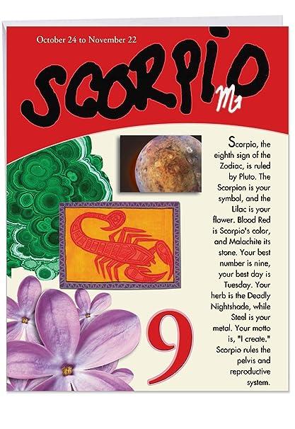 Scorpio Zodiac Sign Happy Birthday Card 85 X 11 Inch