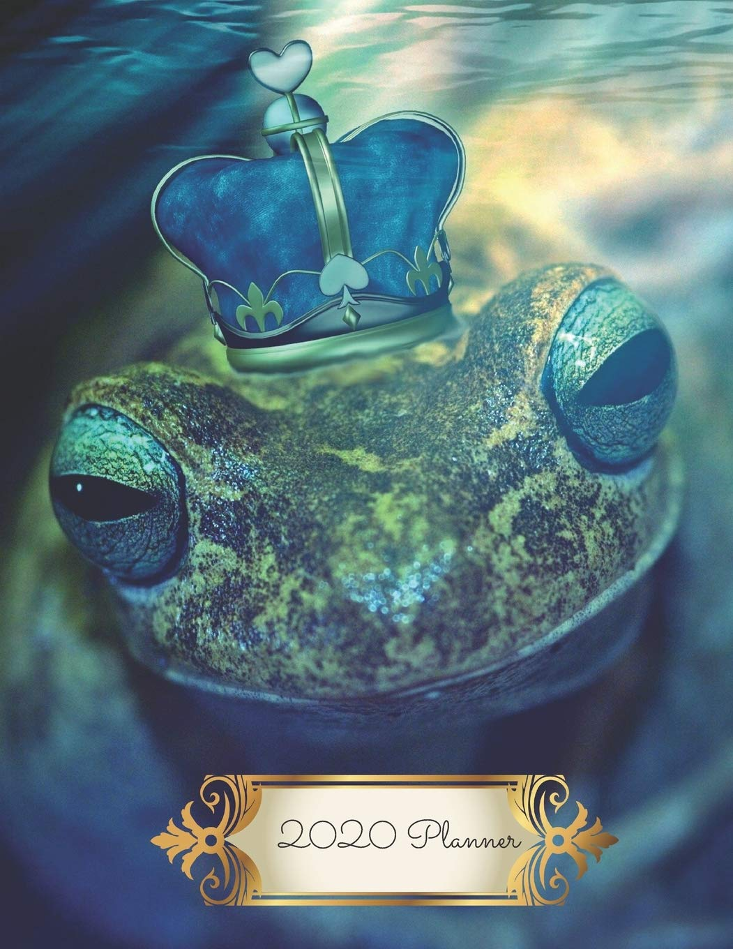 Frog Prince Fairy Tale 2020 Diary Planner: Monthly and Weekly Calendars with Phonebook Password Log and Journal