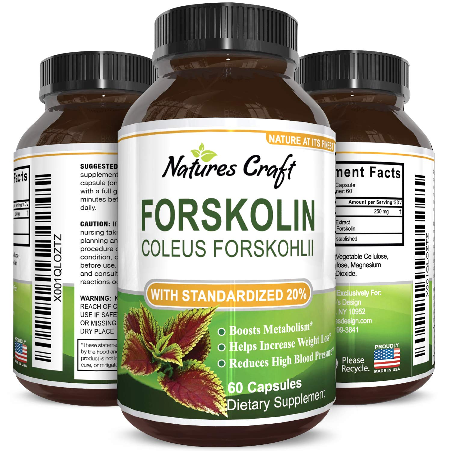 Forskolin 500mg Weight Loss Appetite Suppressant Supplement 60 Capsules Anti Age Weight Management