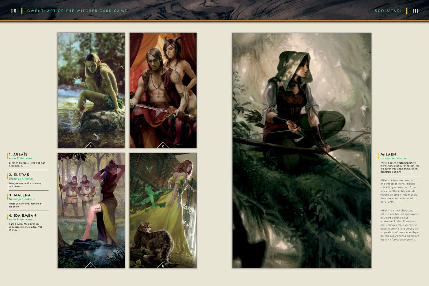 Art Of The Witcher Card Game, The: Gwent Gallery Collection ...