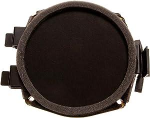 ACDelco 15038566 GM Original Equipment Front Door Radio Speaker