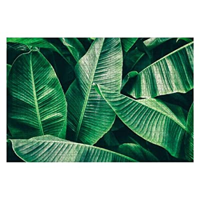 Tropical Banana Palm Leaf Natural Summer Scenery Stock Pictures 1000 Piece Wooden Jigsaw Puzzle DIY Children Educational Puzzles Adult Decompression Gift Creative Games Toys Puzzles Home Decor: Toys & Games [5Bkhe0304610]