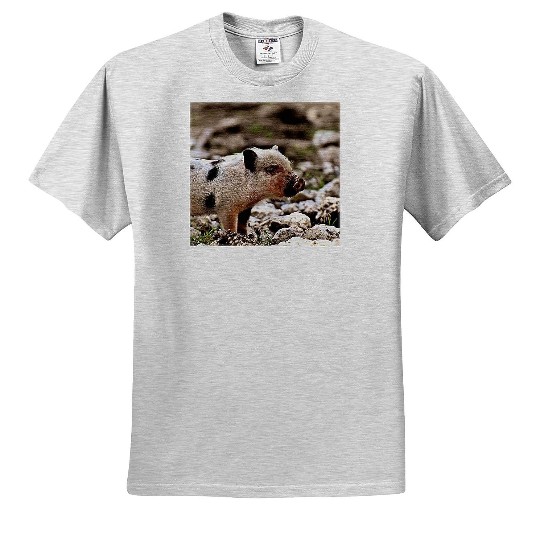 Pig Piglet Farm Animal in The Wildlife Nature T-Shirts 3dRose Sven Herkenrath Animal