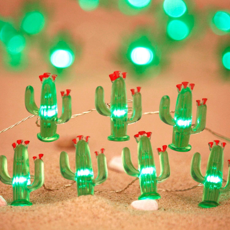 Cactus succulents string lights decoration