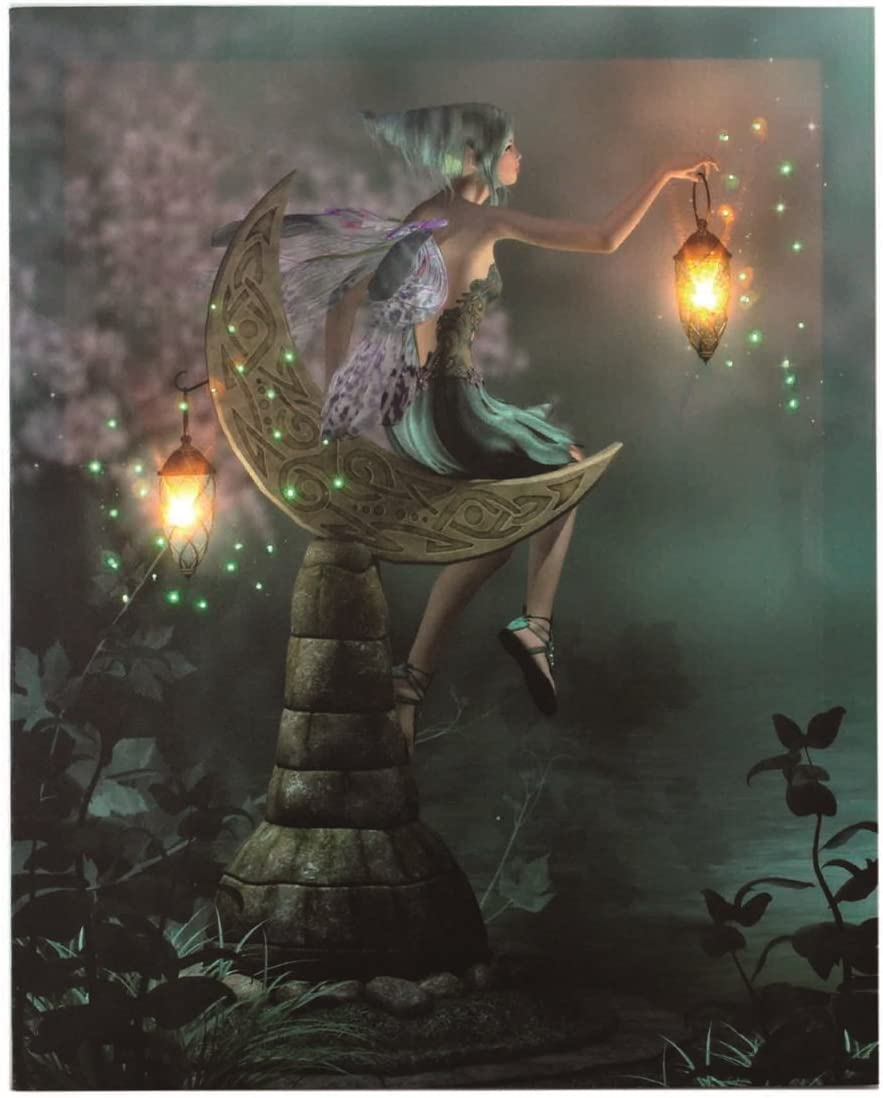 Oak Street Wholesale OSW Fairy Girl Sitting in Moon Garden with 2 Lanterns Fibre Optic Light Up Canvas Art 6 Hour On Timer Wall Decor Color Picture