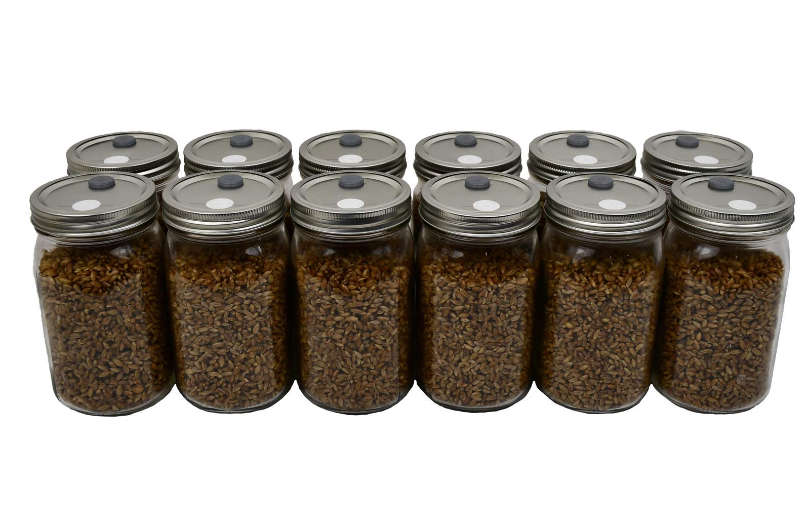 Sterilized Rye Berry Mushroom Substrate in Injectable Jars (12 Count)