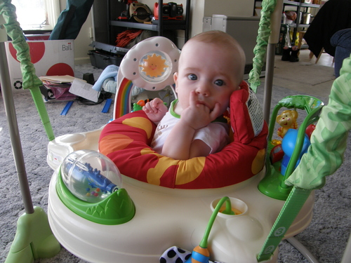 Fisher-Price Rainforest Jumperoo Very happy, especially for the price.