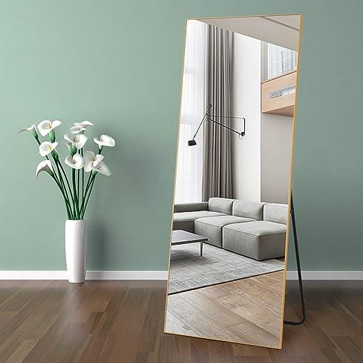 Amazon Com Self Full Length Floor Mirror 65 22 Metal Aluminum