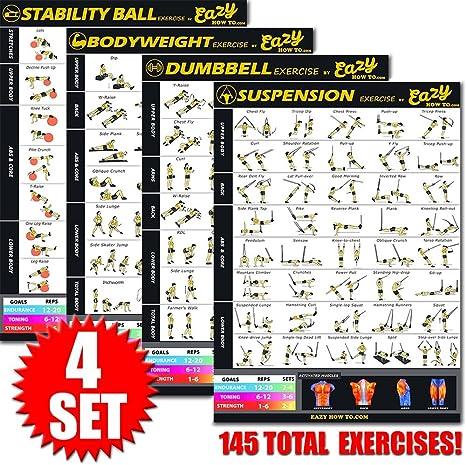 Eazy How To póster para ejercicios con cables de suspensión, 51 x 73 cm, tonificación, musculación, alta resistencia, premium, 4 Pack, Estándar: Amazon.es: Juguetes y juegos