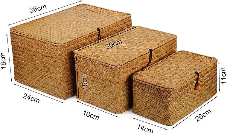 DOKOT Seagrass Cestas Mimbre Decoración Cesto de Almacenaje con Tapa Rectangular Tejido de Ratán Caja con Tapa (Pequeño 26cmx14cmx11cm H): Amazon.es: Hogar