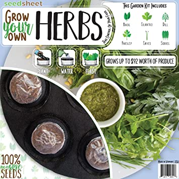Seedsheet Grow Your Own Herbs Garden Fast Growing Organic NonGMO Recipe Garden  Kit