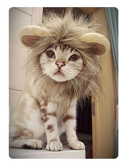 V.JUST Divertido Lindo Gato Peluca Mascota Traje Peluca león Melena Peluca con Orejas para