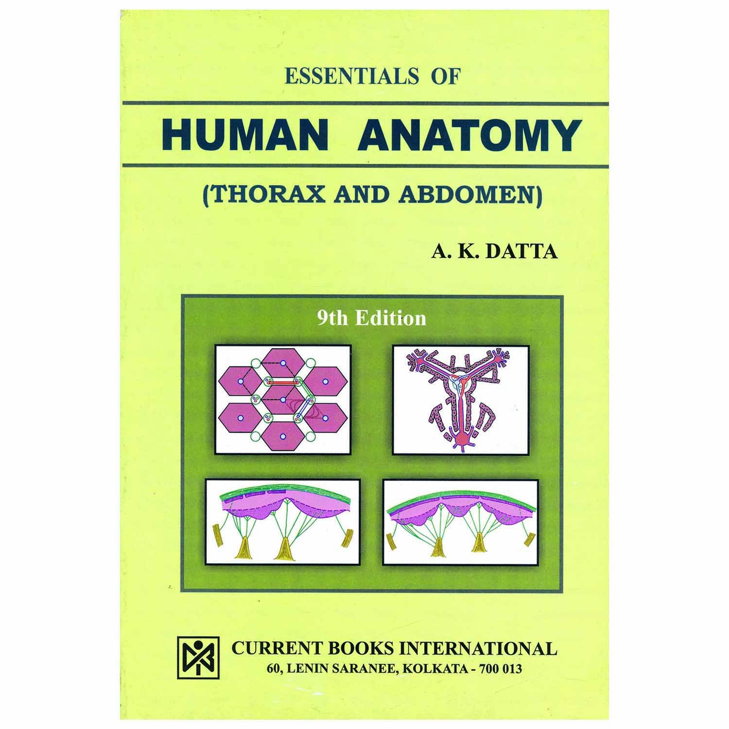 Amazon Buy Essentials Of Human Anatomy Vol 1 Thorax And