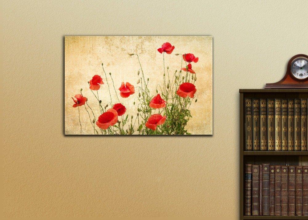 Colorful Poppy Wall Decor Motif - Art & Wall Decor - hecatalog.info