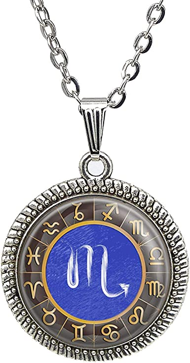 FREE GIFT BAG Silver Plated CAPRICORN Zodiac Astrology Necklace Constellation
