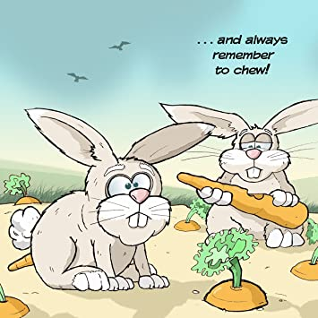 Twizler Funny Card With Rabbits Blank