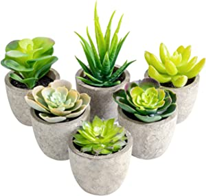 T4U Assorted Artificial Succulent Plants Decorative Plastic Faux Cactus with Grey Pots, Pack of 6