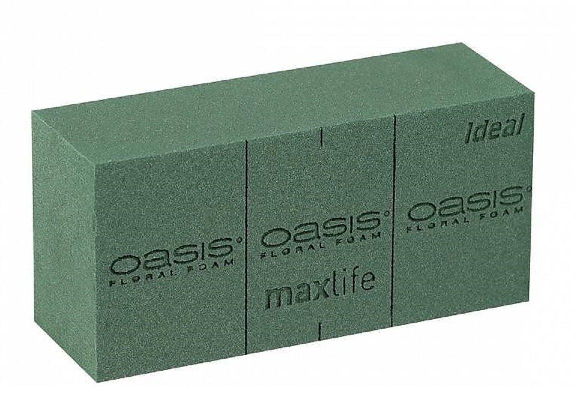 4 x OASIS IDEAL Esponja Floral Pastillas de Esponja para flores frescas