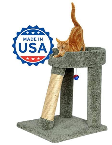 Amazon.com: Angled Cat Scratching Post Y cama (24 inch Color ...