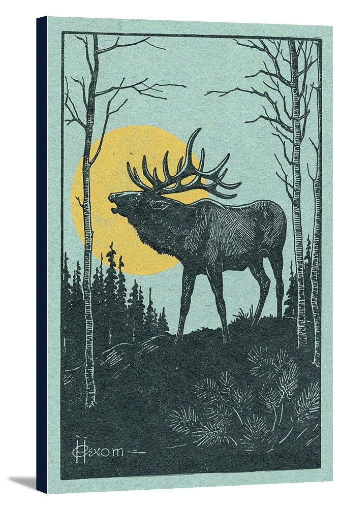 Nature Magazine – View of a Elk with the full moon 19 3/4 x 24 Gallery Canvas LANT-3P-SC-30123-24x36 B0184APYBC  19 3/4 x 24 Gallery Canvas