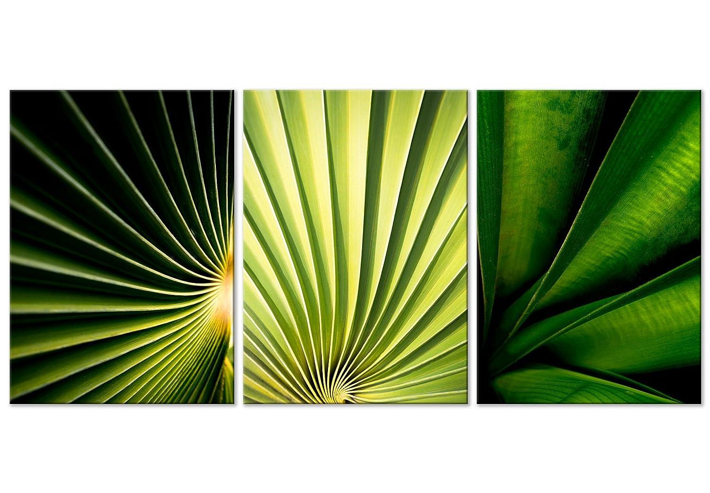 murando Quadro Cactus 120x60 cm Stampa su Tela in TNT XXL Immagini Moderni Murale Fotografia Grafica Decorazione da Parete 3 Parti Natura Bianco Verde b-B-0304-b-e