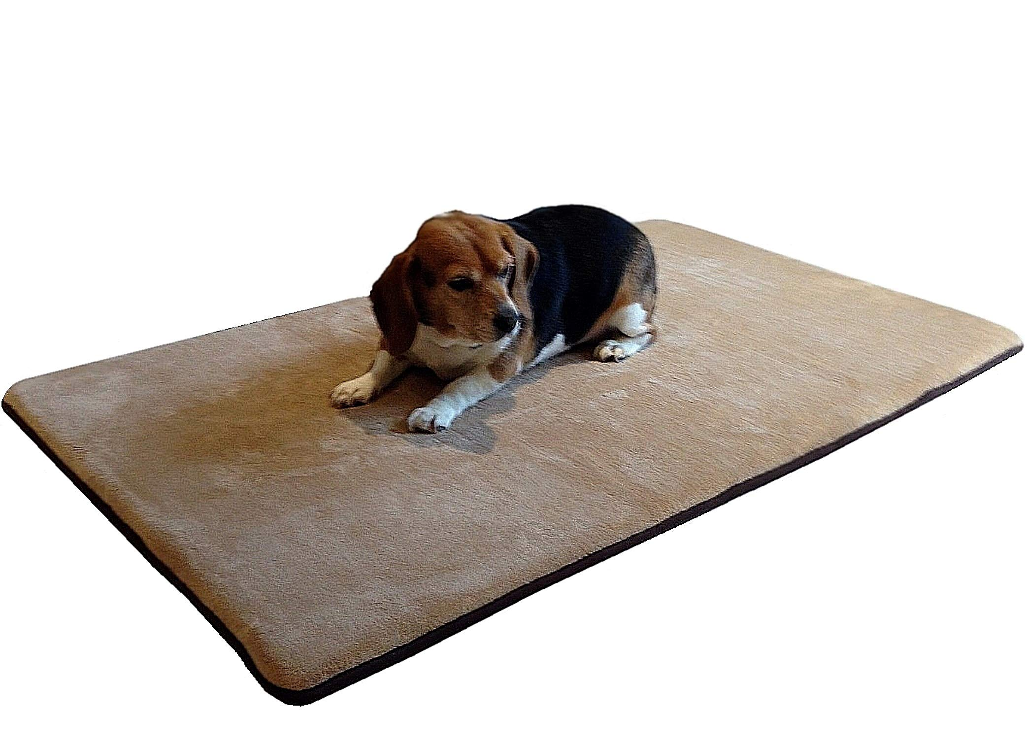 Dogbed4less Jumbo Memory Foam Pet Dog Bed Mat Pillow Mattress Topper 75''X38'' Super Large Twin Size for Extra Large Pet - Beige