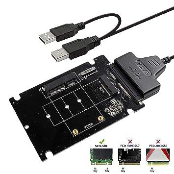 QNINE Adaptador M.2 o MSATA a USB o SATA 3.0, Tarjeta ...