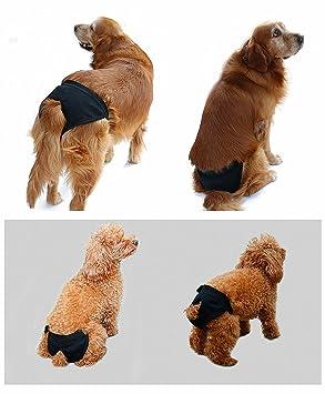 CXYP Braga perro calor Dog higiénica lavable elástico flexible verano transpirable para perro/Dog contra