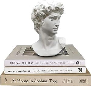 Greek Statue of David - Head Bust Statue for Roman Home Decor - Resin Sculpture