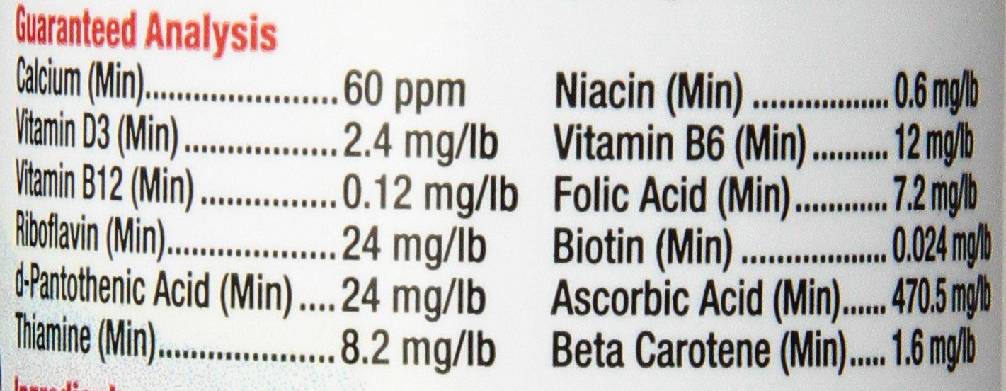 Zilla reptil suministros de salud vitamina Suplemento Alimentos aerosol, 8-Ounce: Amazon.es: Productos para mascotas
