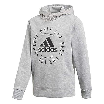 adidas YB SID PO Sudadera, Niños, (brgrin/Negro), 110