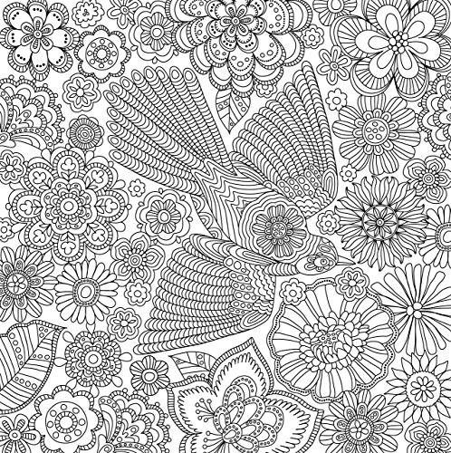 Blooms Birds And Butterflies Adult Coloring Book 31