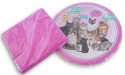 Amazon.com: Rosa gatos fiesta de cumpleaños Kit de ...