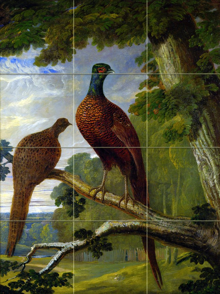 A PHEASANT COCK AND HEN by John Frederick Herring Tile Mural Kitchen Bathroom Wall Backsplash Behind Stove Range Sink Splashback 3x4 6'' Rialto