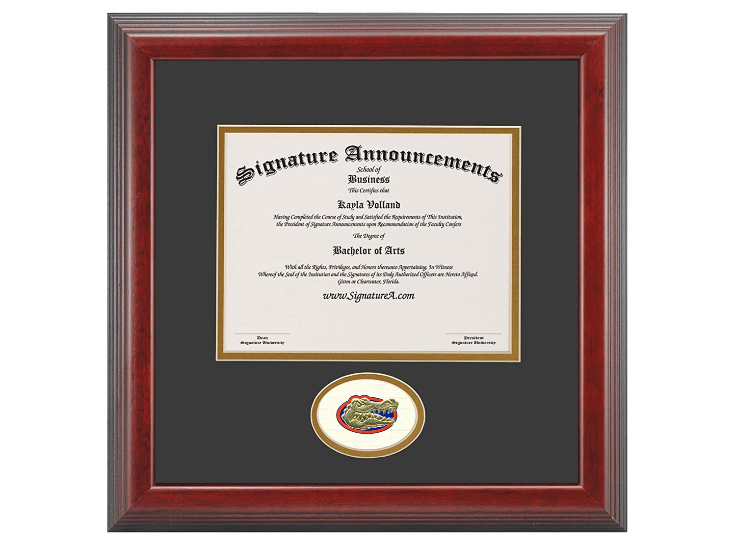 Cherry Signature Announcements University-of-Florida-College-of-Dentistry Sculpted Foil Seal Graduation Diploma Frame 20 x 20