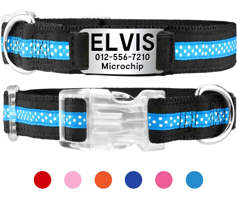 Taglory Collar de Perro Personalizado,Collares con Placa de ...