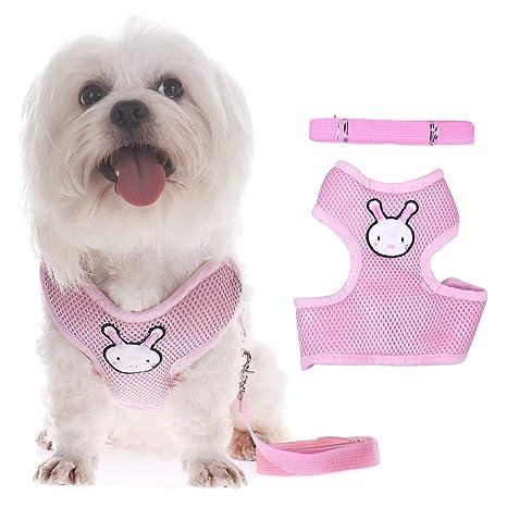 Pequeñas Mascotas cómodo arnés y correa Set conejo/panda patrón de ...