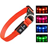 LED Dog Collar - Rechargeable Light Up Safety Pet Collar - Waterproof Flashing Light Up Dog Collar, Basic Dog Collars