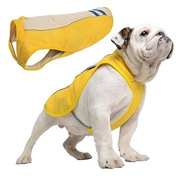 Amazon.com : Cooling Dog Vest Harness Cooler Jacket With Adjustable