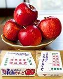 【A級品】竹嶋有機農園 紅玉4,5kg(化学農薬・化学肥料不使用) ※アイスボックスにて常温配送
