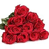 luyue Gypsophila Artificiale Finto Rosa Seta Fiore Festa Di Nozze Bouquet Home Decor, confezione da 10 Style 1 Red
