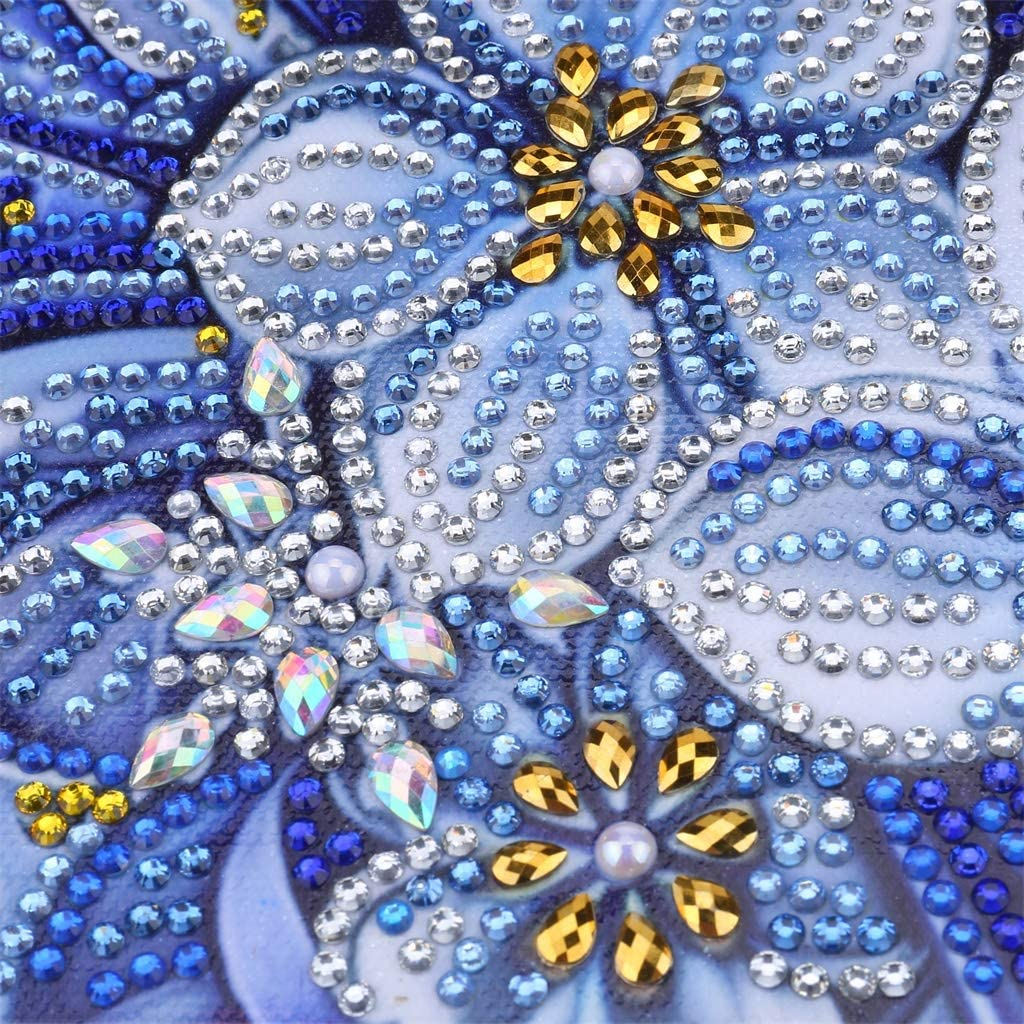 Beauty Partial Drill Special Shape Crystal Rhinestone Embroidery Pictures for Home Wall Decor Gift 12X16 Inch DIY 5D Diamond Painting by Number Kits