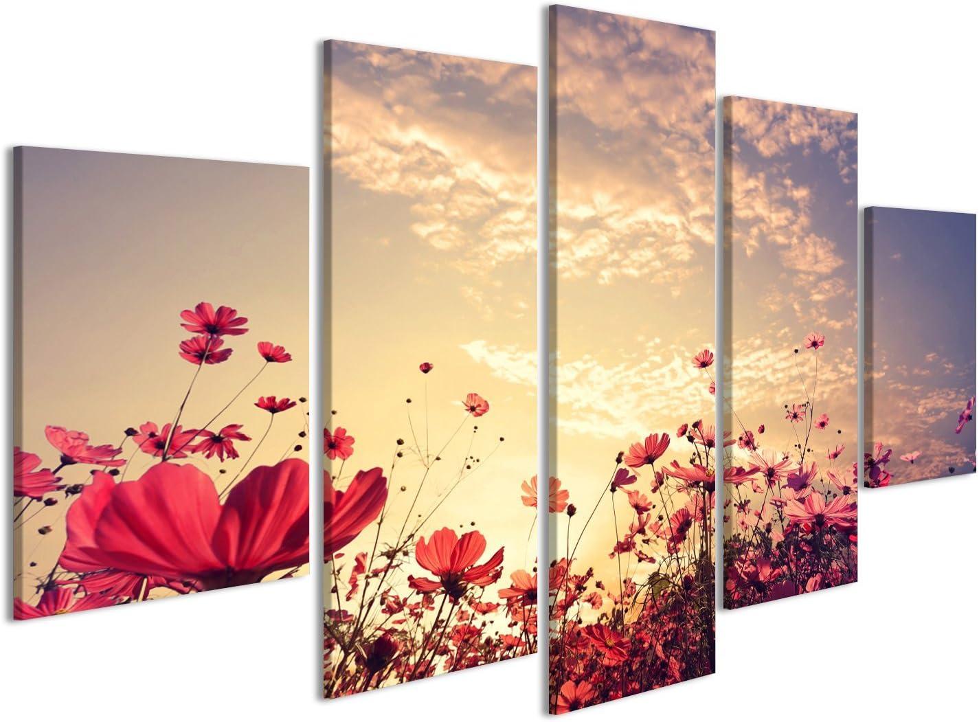 islandburner Cuadro Cuadros Paisaje Fondo del Campo del Cosmos Flor roja Hermosa Rosa y con Sol. Color de la Vendimia Impresión sobre Lienzo - Formato Grande - Cuadros Modernos FBA