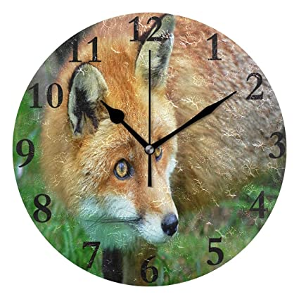 Amazon.com: FunnyCustom Round Wall Clock Red Fox Acrylic ...