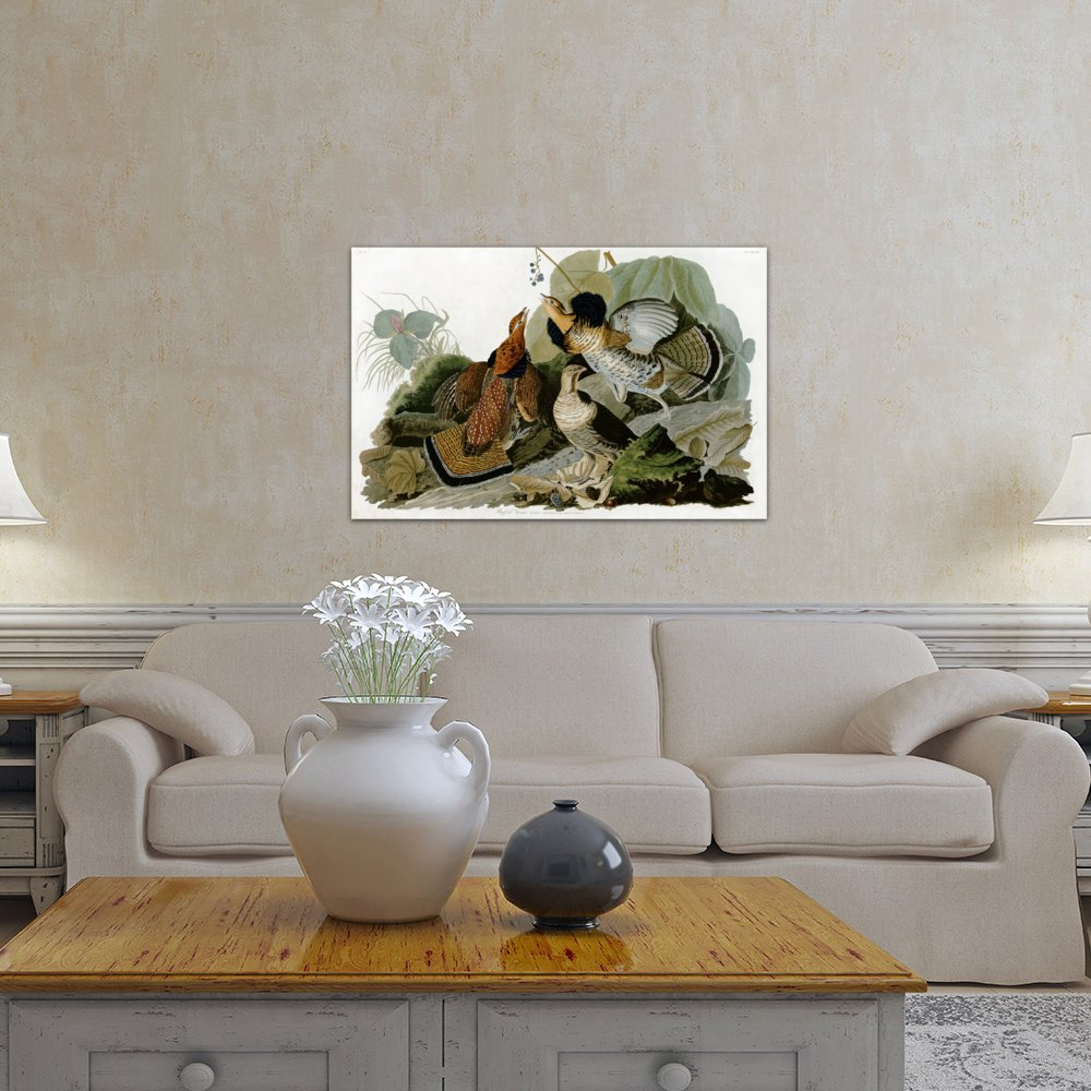 iCanvasART 3-Piece Ruffed Grouse Canvas Print by John James Audubon 0.75 by 60 by 40-Inch