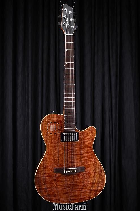 Godin guitarras 038206 F _ 13514159 diseño guitarra eléctrica