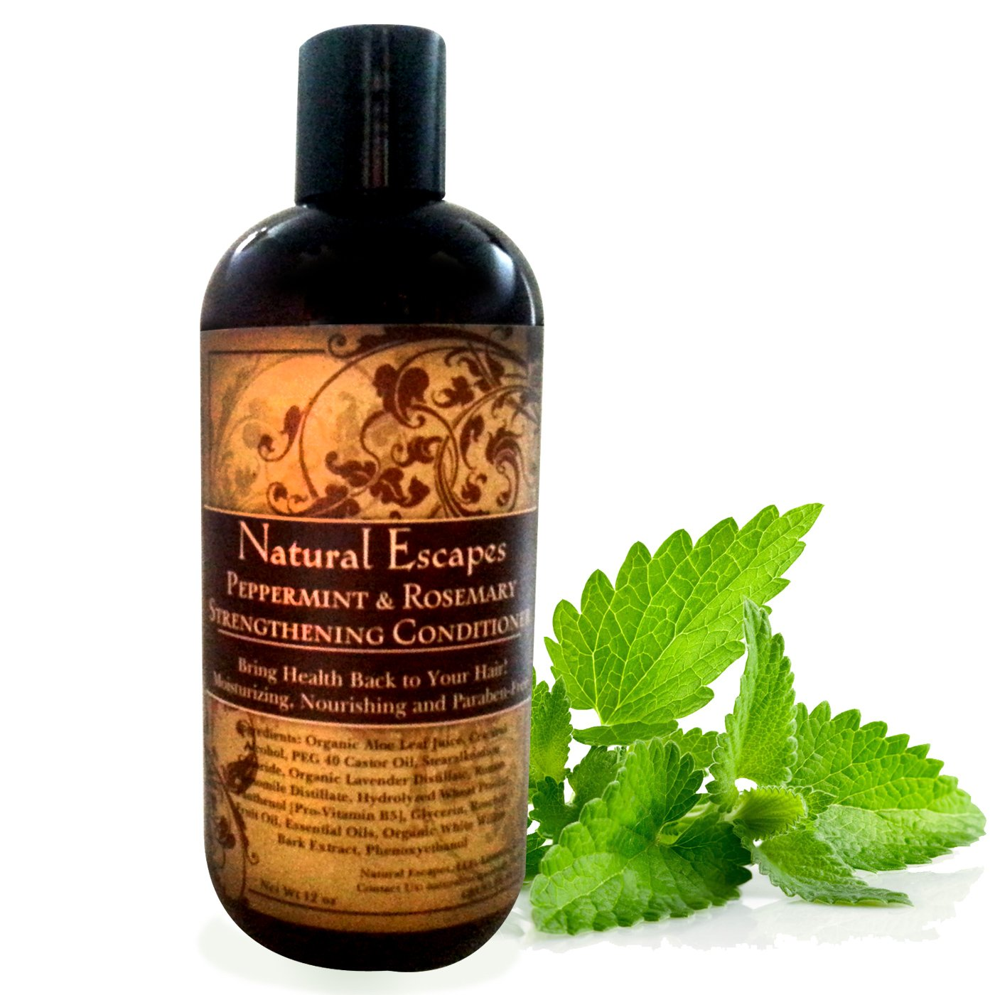 Amazon.com: Peppermint & Rosemary Strengthening Shampoo