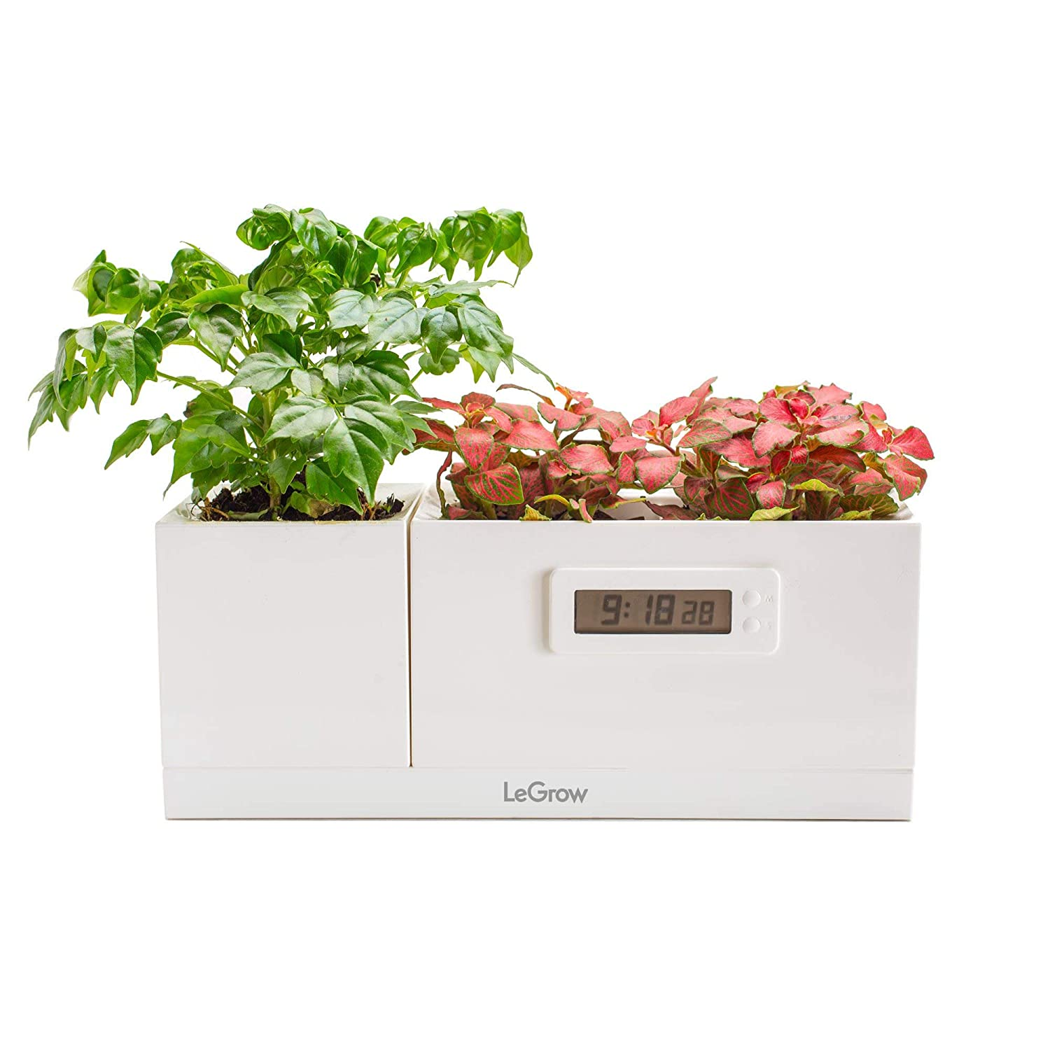 Ailixi Legrow Indoor Garden Kit Hydroponics Garden Growing System with Magical Plant Clock 3 Gardening Pots Greenhouse for Home Office Decoration