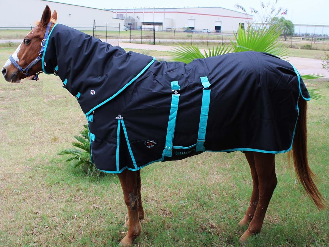 78'' 1200D Turnout Waterproof Horse WINTER BLANKET HEAVY NECK Black Turq 550Combo